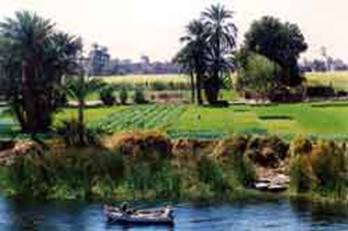 Here is a picture of the banks of the River Nile.
